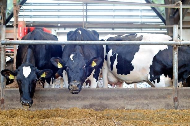Debat: Dansk Energi mangler dokumentation for at fritage landbruget