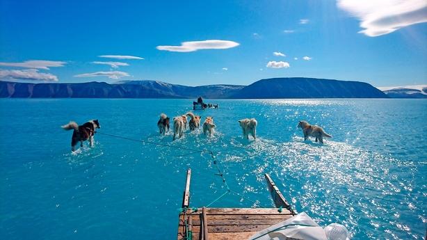 Medierne på grillen: Kollektiv nedsmeltning over isfoto
