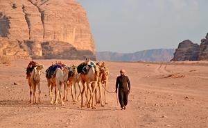På kamelryg gennem Jordans store sandkasse